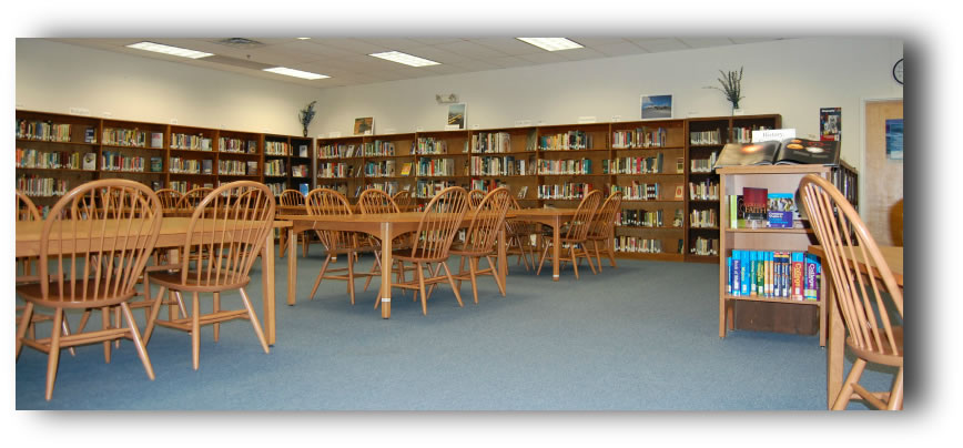 Middle School/High School Library